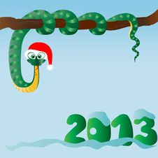 Free Funny Snake &x28;symbol Of 2013 Year&x29; Royalty Free Stock Photography - 27319727