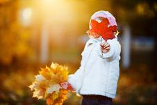 Small Girl Hiding Her Face With Maple Leaf