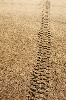 Tire Tracks In Sand Royalty Free Stock Photography