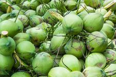 Free Coconuts Fruit Royalty Free Stock Images - 27328439