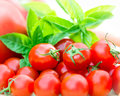 Free Cherry Tomatoes Stock Photography - 27338812