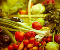 Free Fresh Vegetables Royalty Free Stock Photography - 27338867