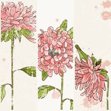 Free Hand Drawn Flowers Royalty Free Stock Photography - 27330067