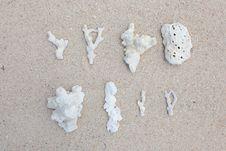Free Natural Coral Stock Image - 27330091