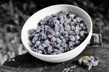 Free Frozen Bilberries On Black And White Background Royalty Free Stock Photography - 27332847