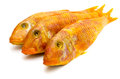 Free Kipper Stock Photos - 27345523