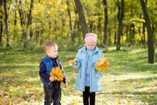 Free Brother And Sister With Autumn Leaves Royalty Free Stock Image - 27344036