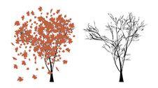 Free Autumn Tree Stock Images - 27348834