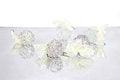 Free Christmas Silver Balls Royalty Free Stock Photo - 27355615