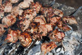 Free Barbecue Meat Prepared On Fire Royalty Free Stock Photo - 27357715