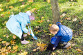 Free Children Collecting Yellow Autumn Leaves Stock Photos - 27359693