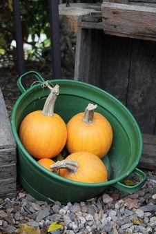 Free Lots Of Pumpkins Royalty Free Stock Photos - 27350918