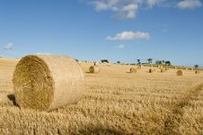 Free Bales Of Hay Stock Photo - 27355290
