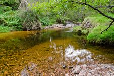 Free Forest Stream Pool Royalty Free Stock Photo - 27355305