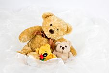 Free Three Teddy-bears Stock Photo - 27356570