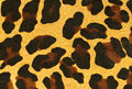 Free Leopard Skin Royalty Free Stock Photo - 27362085