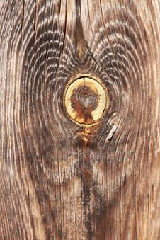 Wood Knot Stock Images