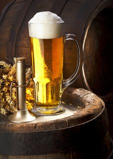 The Still Life With Beer Royalty Free Stock Photography