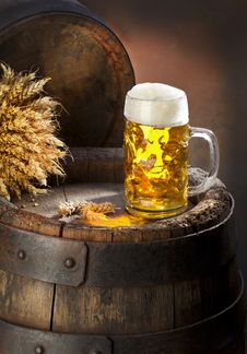 Free The Still Life With Beer Royalty Free Stock Image - 27364496