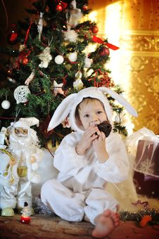 Free Boy And A Christmas Tree Stock Photos - 27365333