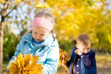 Free Children In The Park In An Autumn Day Royalty Free Stock Photo - 27367385