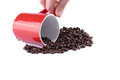Free Coffee Cup On Roasted Coffee Beans Royalty Free Stock Photo - 27371245