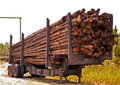 Free Logging Truck Royalty Free Stock Photography - 27377647