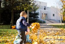 Free Young Children Gathering In Leaves In Autumn Park Stock Photo - 27373680