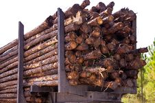 Free Close Up Of Logging Trailer Royalty Free Stock Image - 27377666