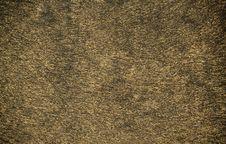 Free Leopard Skin Stock Image - 27379731