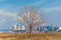 Free Dry Tree Against Power Plant Royalty Free Stock Photography - 27382117