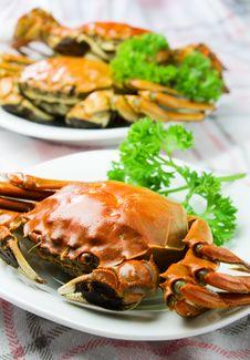 Free Crab Stock Image - 27385501