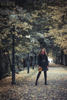 Free Girl With Lanterns Stock Photos - 27385913
