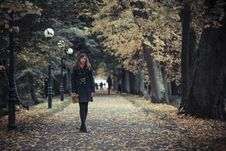 Free Girl With Lanterns Stock Image - 27385941