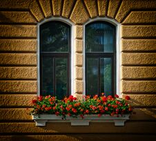 Free Windows With Flowers Royalty Free Stock Images - 27386019