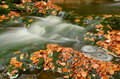 Free Autumn Stream Royalty Free Stock Image - 27391426