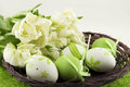 Free Easter Still Life Stock Photography - 27391712