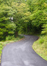 Free Lonely Curved Road With Foliage Stock Images - 27396094