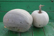 Free Pumpkins Royalty Free Stock Photos - 27390078