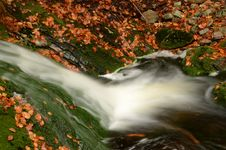 Free Autumn Stream Royalty Free Stock Photography - 27391447