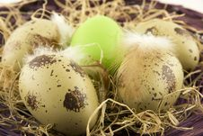 Free Easter Still Life Royalty Free Stock Photography - 27391617