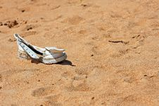 Free A Lonesome Lost Shoe Royalty Free Stock Photos - 27392908