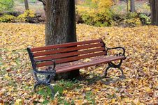 Free Park Bench And Fall Color Royalty Free Stock Photos - 27396038