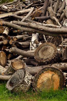 Free Firewood On A Grass Stock Photos - 27398093