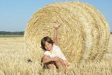 Free Sheaf Stock Photography - 2740912