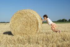 Free Sheaf Stock Images - 2741144