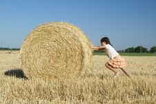 Free Sheaf Stock Photography - 2741192