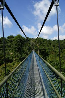 Free Suspension Bridge And Skies Royalty Free Stock Photos - 2744498