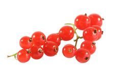 Free Red Currant Royalty Free Stock Images - 2745639