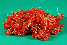 Free Berries Of A Red Currant. Royalty Free Stock Photo - 2745665